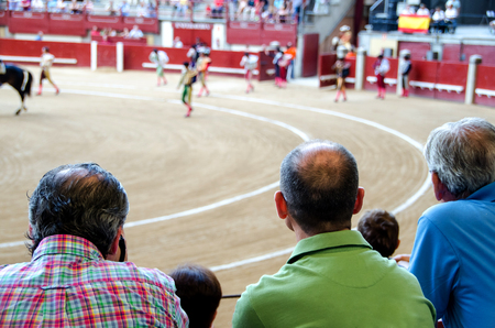 spectators contemplating the paseillo in a bullfight. Spanish corrida de toros