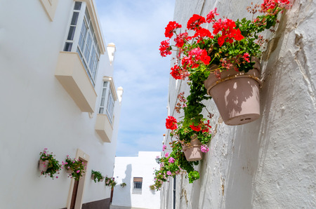 Some pots of geraniums hanging on the wall on the streets of Rota, Cadiz, Spain Standard-Bild
