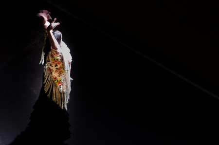 Spanish flamenco dancer with a flowered and multicolored shawl. Flamenca, bailaora