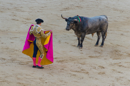 bullfighter in blue and gold suit holding his capote in front of the bull in a bullfight