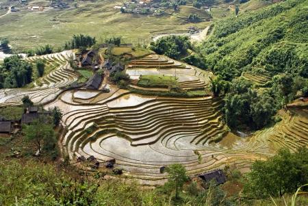 Rice Terraces, Sa Pa, Vietnam Stock Photo - 18648687