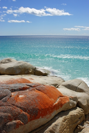 Bay of Fires, one of the most beautiful beaches of the world  Tasmania, Australia