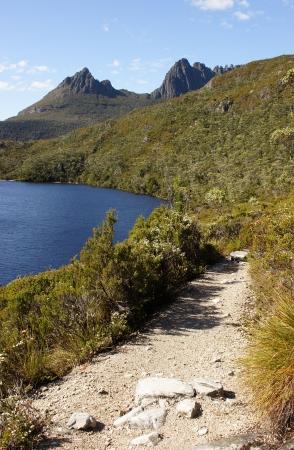 Footpath on Cradle Mountain Lake St  Clair National Park, Tasmania, Australia Stock Photo - 22397125