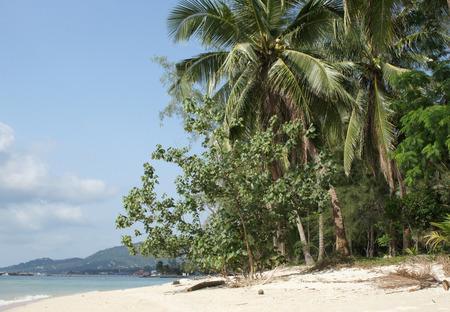 southeast asia: Beach on Koh Samui, Thailand, Southeast Asia                    Stock Photo