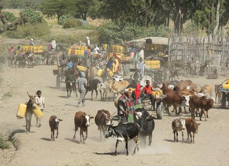 pozo de agua: Gran Valle del Rift, ETIOP�A - 16 de noviembre 2014: La gente proveerse de agua en un pozo de agua el 16 de noviembre de 2014 en el Gran Valle del Rift, Etiop�a, �frica