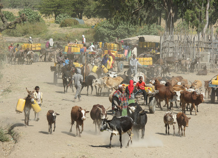 rift: GREAT RIFT VALLEY, ETHIOPIA - NOVEMBER 16, 2014: People providing themselves with water on a waterhole on November 16, 2014 in the Great Rift Valley, Ethiopia, Africa