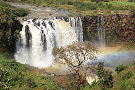 cataract falls: Blue Nile waterfalls, Bahar Dar, Ethiopia, Africa Stock Photo
