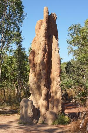 mound: Termite mound, Litchfield National Park, Australia