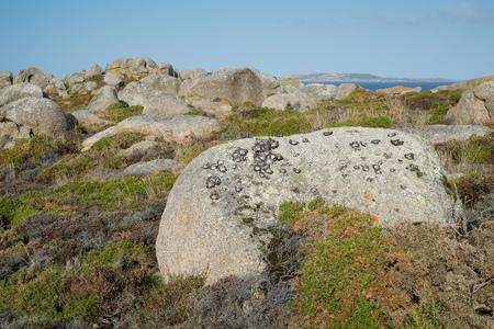 Beautiful landscape of Galicia, coastline close to O Grove, Spain, Europe 免版税图像