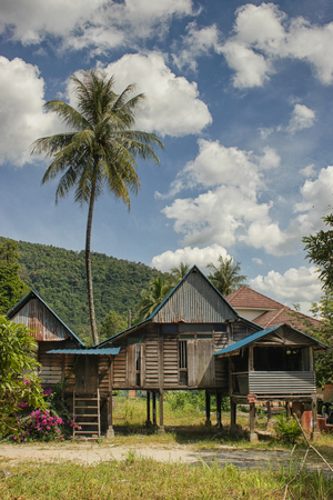 Traditional rural residence with palm tree, village on Penang Island, Malaysia