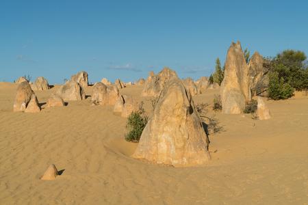 Pinnacles Desert in early morning light, Nambung National Park, Western Australia Stock Photo