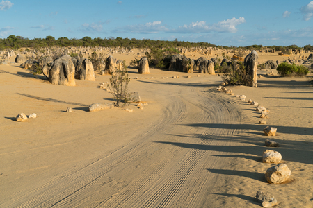 Pinnacles Desert in early morning light, Nambung National Park, Western Australia Stock Photo
