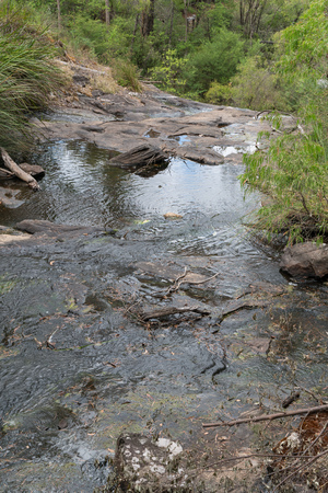 Small creek within the Beedelup National Park, Western Australia
