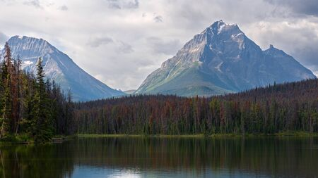 Panoramic image of Leach Lake, Jasper National Park, Alberta, Canada 写真素材