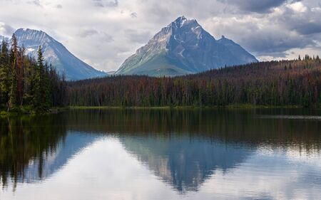 Panoramic image of Leach Lake, Jasper National Park, Alberta, Canada 写真素材