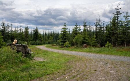 Panoramic image of the Rothaarsteig close to Winterberg, hiking trail through the Sauerland region, Germany Stock Photo