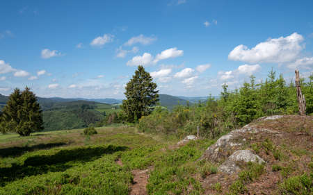 Panoramic landscape of National Park 'Kalte Kirche' close to Schmallenberg, Sauerland, Germany