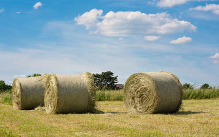 Panoramic image of hay rolls on a meadow against blue sky, agriculture, Germany Stock Photo