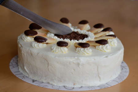calorie rich food: Someone cuts Malakoff cake with cake knife