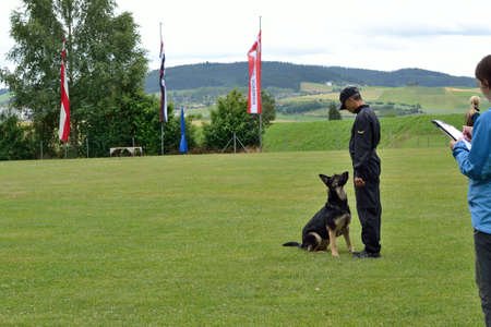 drudgery: Dog trainer is testing with the German Shepherd Dog Stock Photo