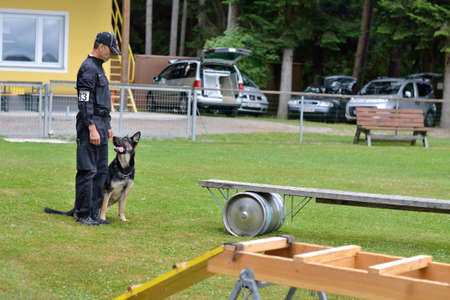 commanded: Dog trainer commanded German shepherd on movable bridge Stock Photo