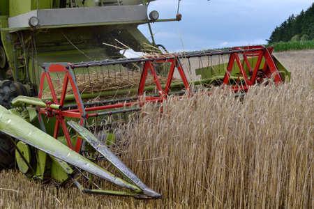 cosechadora: peque�a m�quina segadora en la cosecha de ma�z - primer plano Foto de archivo