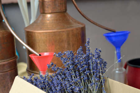 lavender oil: Genuine lavender oil itself