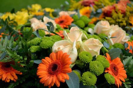 floridity: colorful mix of bright cut flowers