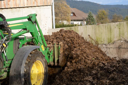 Cow dung is loaded with tractor Stock Photo