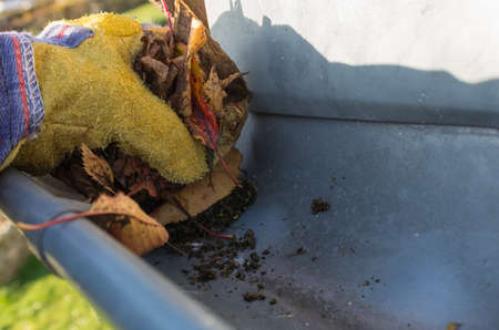 Leaves residues are removed with work glove made of gutter