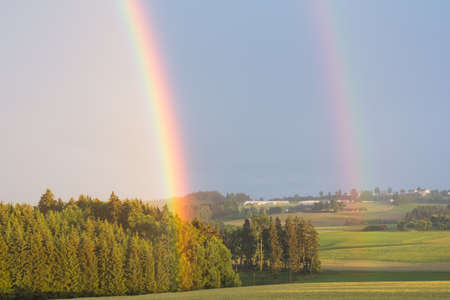 vigorously: vigorously brilliant rainbow in duplicate at summer rain