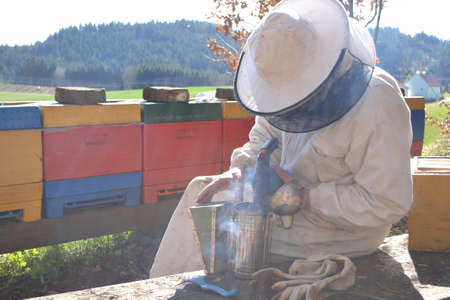 smoker: Beekeepers with Smoker in his hives