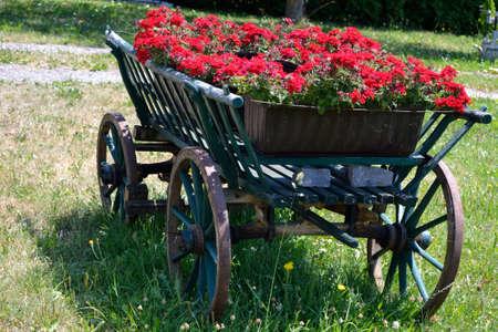 carreta madera: viejo vagón de madera decorado con flores