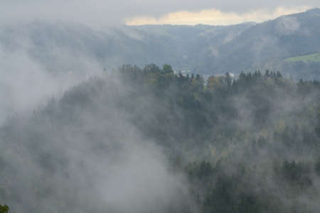 hilly: Hilly and misty autumn landscape