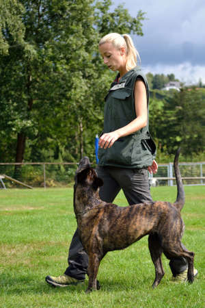 Dog trainer exercising with her dog