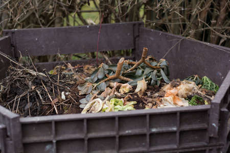 degradable: Vegetable and garden waste in open composter