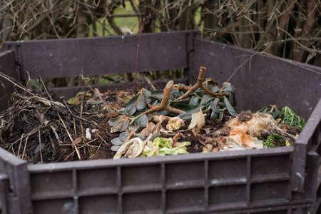 garden waste: Vegetable and garden waste in open composter