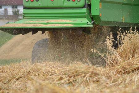 cosechadora: verde cosechadoras en la cosecha de cereales - la agricultura