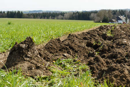 agricultural engineering: plowed meadow became fresh farmland - clod Closeup