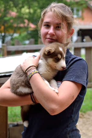 mushing: Teenager with husky puppies in the arms