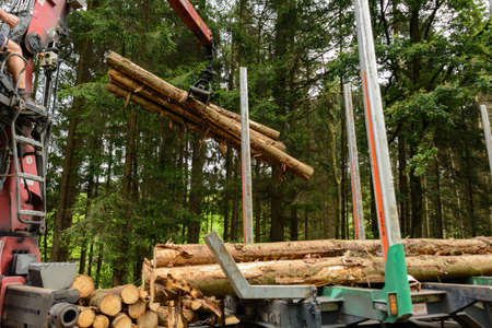 sustained: Forestry Bloc timber is loaded by crane on Transportation