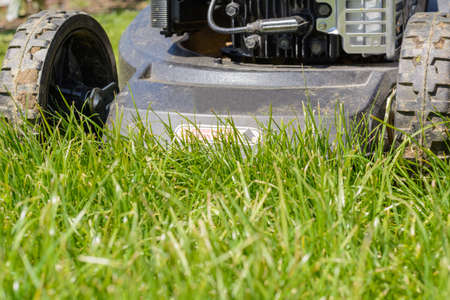 Lawn mowing lawn with a lawn mower Stock Photo