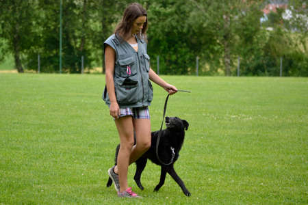 dog school: Teenage girl with a mixed dog at dog training park
