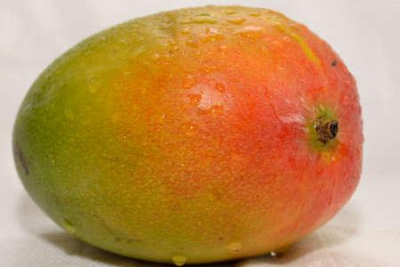 tropical fruit - juicy fresh mango as croped image