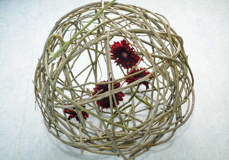 red gerbera in wicker ball - valentines day isolated Stock Photo