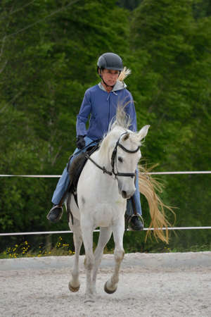 Riding instructor trains with her white horse at the practice site