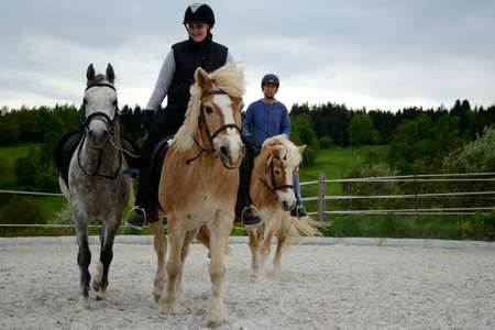 Two riders riding horses at the training ground - close-up equestrian sport