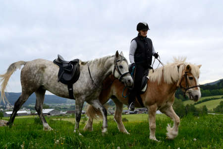 Rider with two different breeds practices on green spring meadow