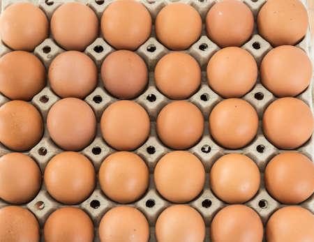 brown eggs from organic free range in egg box ranked Standard-Bild