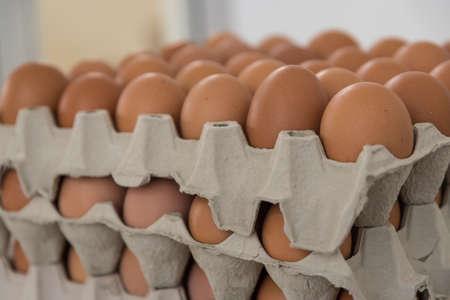 brown organic free range eggs in egg carton lined up Standard-Bild